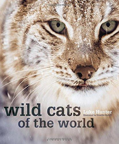 Wild Cats of the World by Luke Hunter