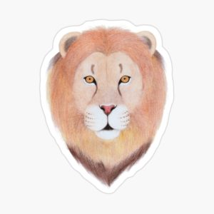African Lion Stickers for Kids